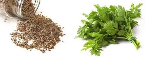 Семена и листья петрушки