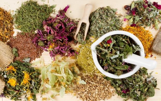 Травы для лечения цистита