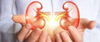 Обследование мочеполовой системы. Исследования на наличие инфекций.